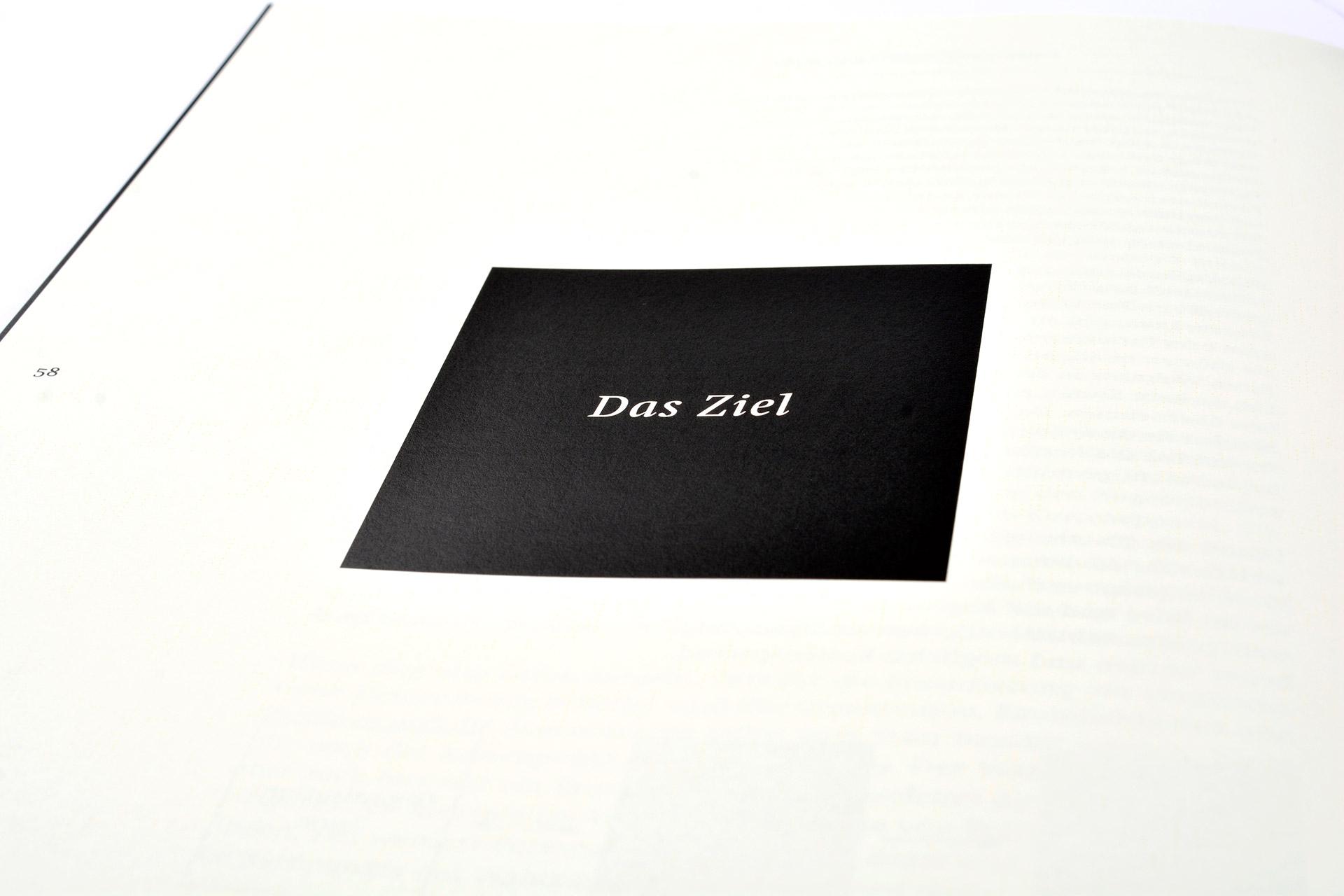 Demokratie, Demonstrieren, Design, Partei, Konzept, Studie, Buch, Münster, Bennet Grüttner