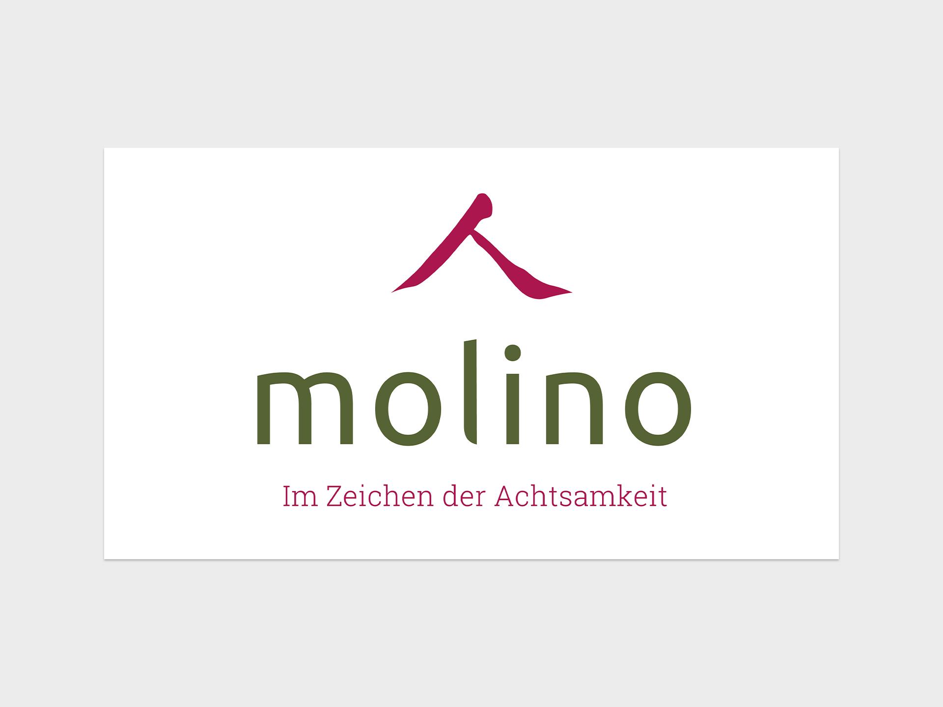 Design, Molino, Web-Design, Layout, Telgte, Grafik, Logo, Studio Auckz